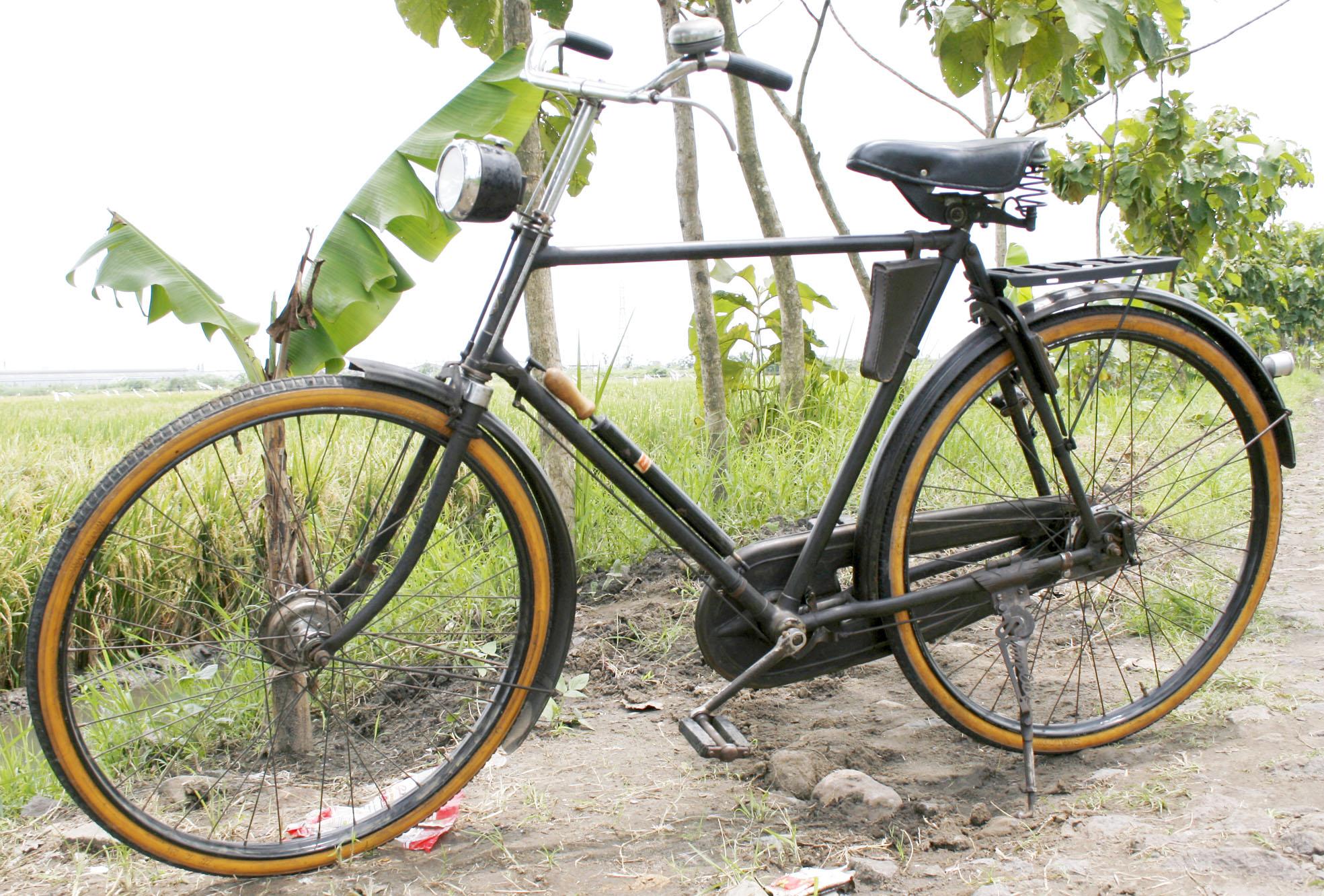 SIMPLEX CYCLOIDE 294565 | www.sepeda.wordpress.com
